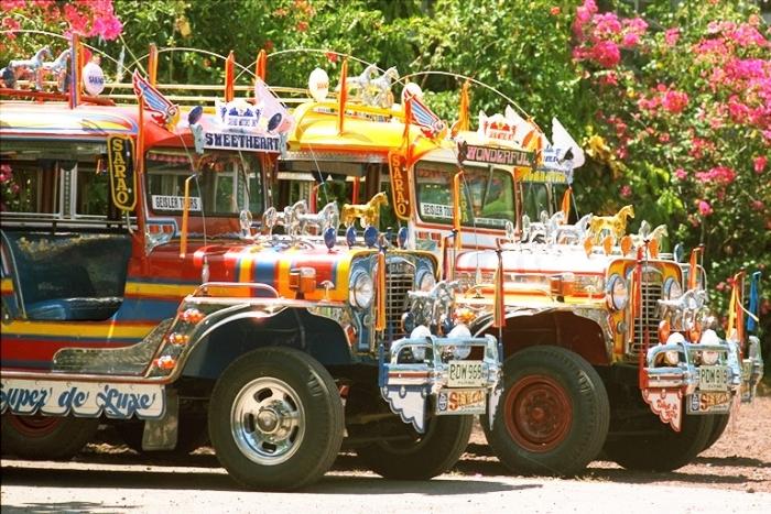 马尼拉满大街都是jeepney,这都是以前美国大兵留下的军用jeep改造而成的,现在是街上普遍的公共交通工具之一。