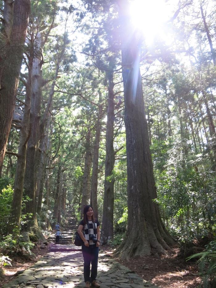 熊野古道地区。