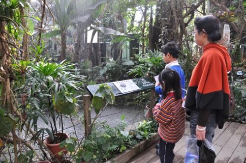 在生态多样性探索区内可体验热带雨林暴雨的威力。
