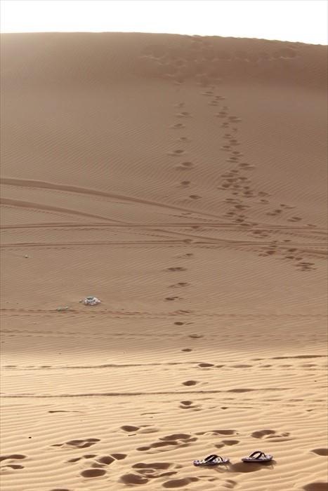 你有想过来若你能亲身来到沙漠,会做些什么?