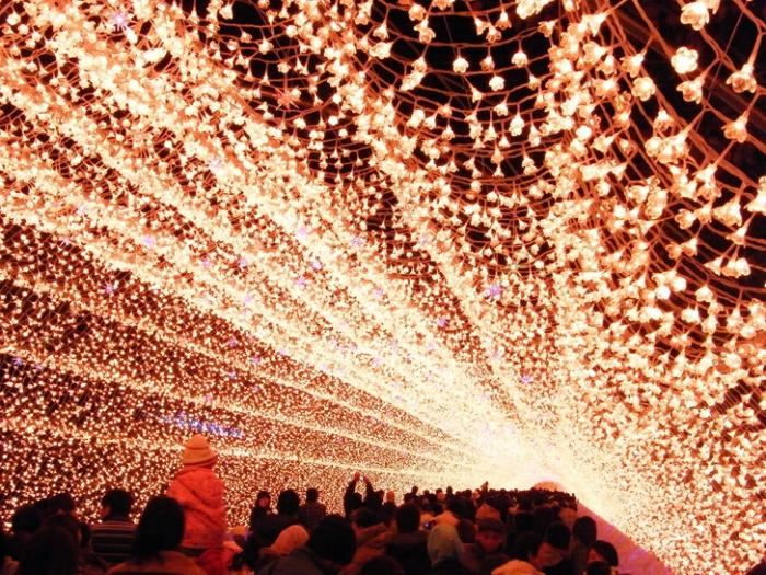冬季花灯如星光!