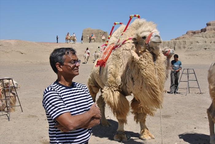 乘坐骆驼是这里最受欢迎的活动。