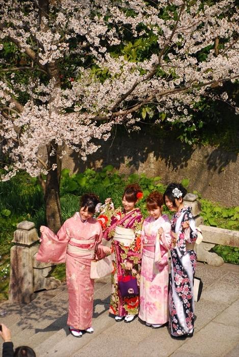 幸运的话还可以遇见身穿和服的日本美眉,别忘了拍照哟!