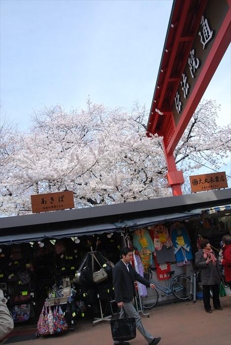 浅草寺前方道路两侧那一排排自江户时代延续下来的大小店铺,也极具吸引力。店铺除售卖吉祥物品、纪念品、工艺品外,还有多种小吃,值得你花时间慢慢挖掘!