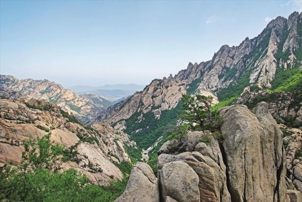 站在九龙渊路线的最顶峰九龙台可见层峦叠嶂的山峰。
