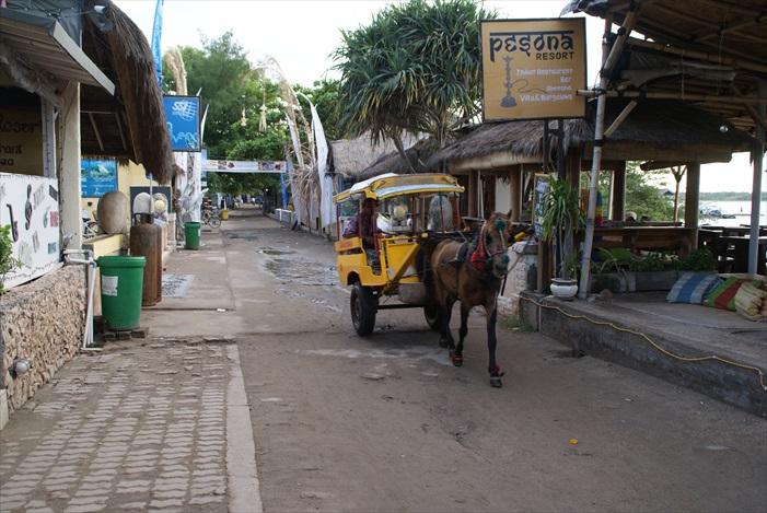 岛上就只有马车和脚踏车穿行