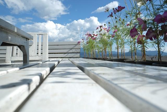 坐在咖啡馆,闻着花香,看着可爱的云朵,蓝色的天空,我的心情很漂亮。
