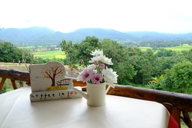 咖啡馆一隅,可爱的小花。