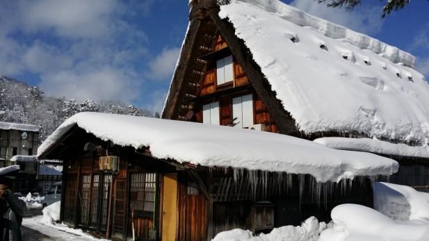 """合掌村民宅的屋顶呈人字型,如同双手合十故被称作""""合掌""""。"""