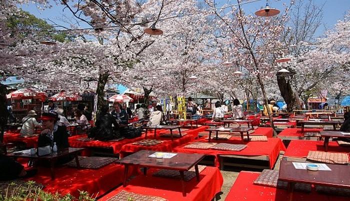 maruyama park 1