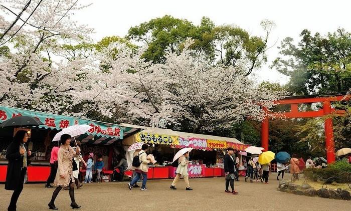 maruyama park 6