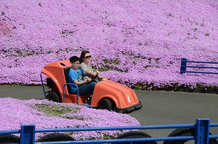 小孩也可以安全操纵,让父母可当乘客提早享福。