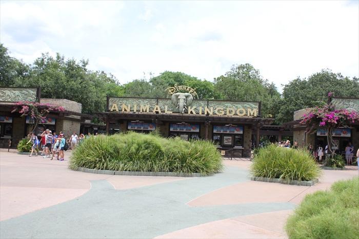 迪斯尼动物王国。是迪斯尼主题乐园内最早关闭的公园:下午5时就要说拜拜了!