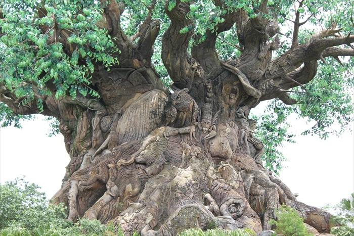 树上刻有多种现存、濒危、已灭绝的动物。