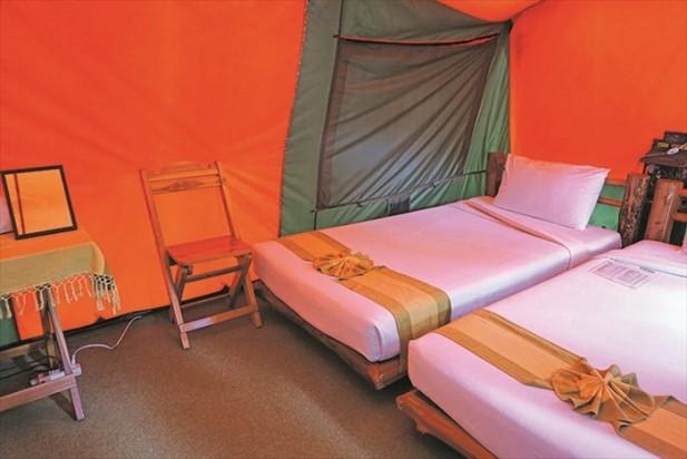 农场有划分露营区,想要在农场里住宿的话,不妨试着住宿在帐篷里。