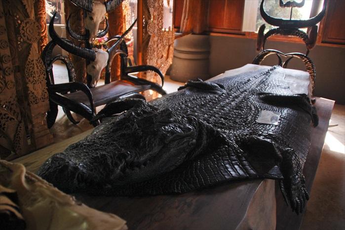 黑庙里成列的鳄鱼皮。
