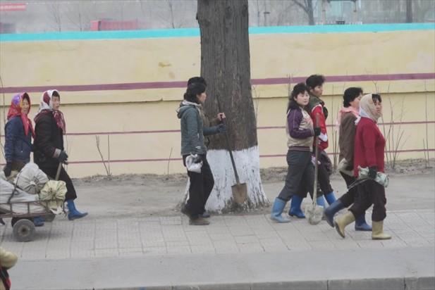 平壤街头的妇女;gotong royong,打扫出干净卫生的环境,敬佩!