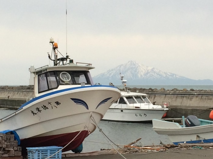 稚内与周边岛屿配合;以捕鱼为生 extra: 从湿地公园瞭望45公里外的利尻岛利尻富士山;壮观。
