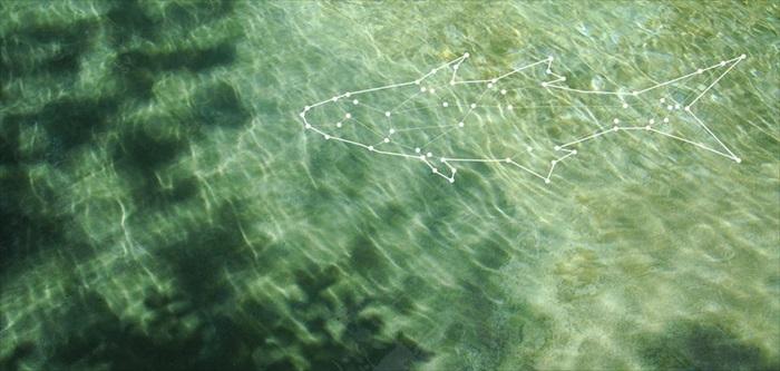 Ikan Kurau Homestay
