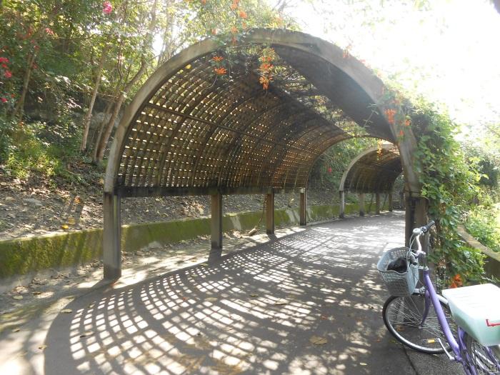 台东森林公园也设有花架隧道,适合一家大小前来散步。