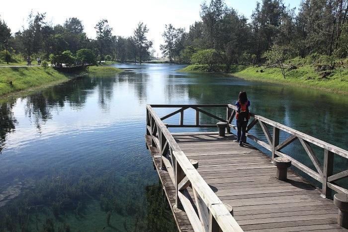 倒影映在清澈的琵琶湖水上,景致如画。