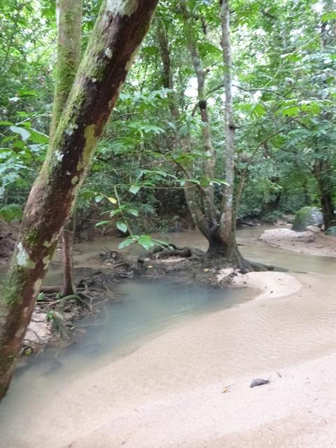开始是漂亮的小河。