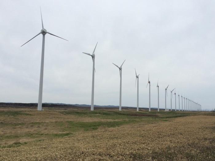 稚内的风力发电,全国的模仿;人烟稀少,用电消耗不多。