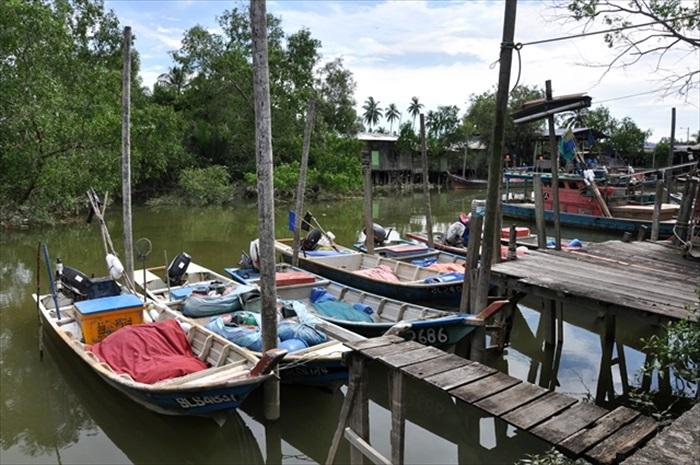 渔船、红树林和高脚屋凑成了典型的渔村色彩。