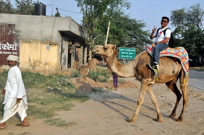 乘坐骆驼,以有趣的方式了解当地居民的生活。