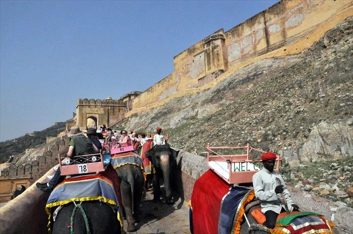 许多游客都喜欢在此尝试骑大象的滋味。