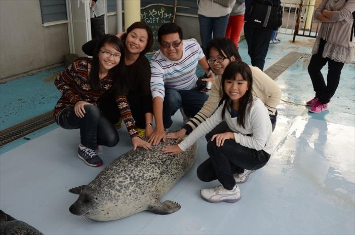 让海豹也成为大家旅途中的回忆吧!
