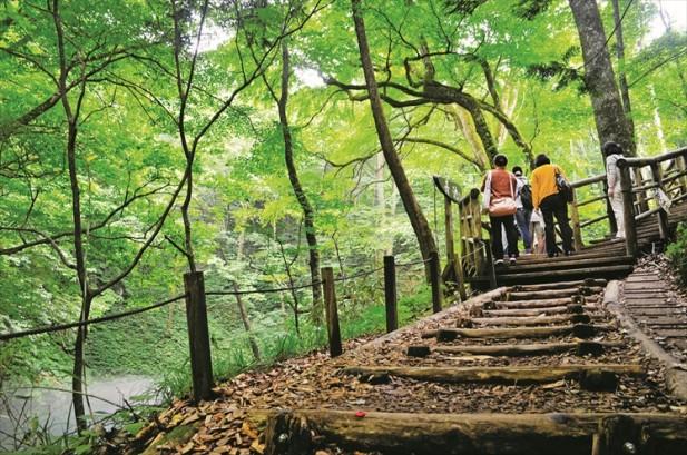 沿着木梯而上可以更宽阔的角度观看清池。