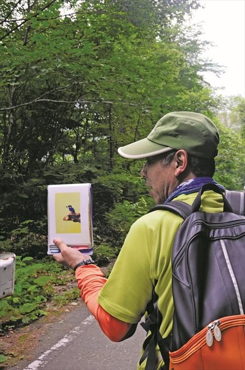 我们的向导西田秀一先生一路向我们介绍当地的自然生态,看他这么地身体强壮,据说是常年步行于白神山地的功劳。