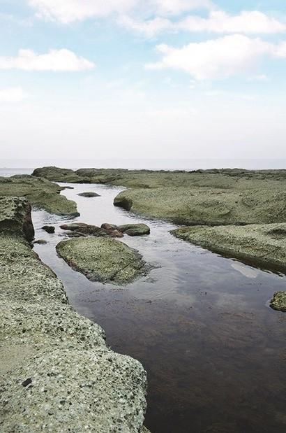 退潮的千叠敷海岸将原本浸在水中的岩石露出,又有着另一番美景。
