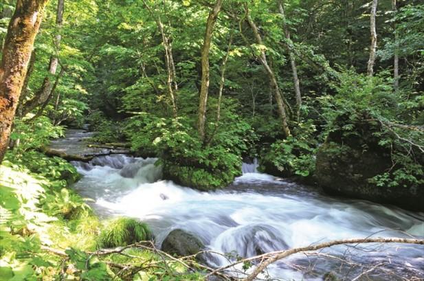 湍急的溪水,溅出的水珠为我们带来点点的凉意。