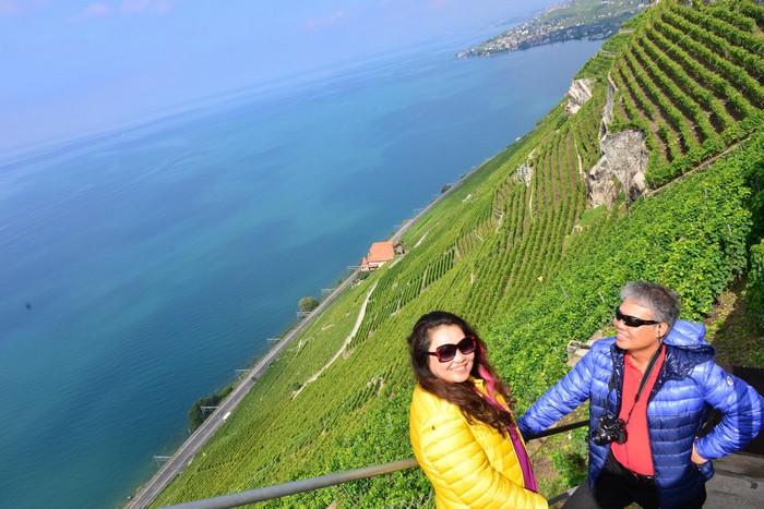 St.Saphorin 葡萄园,属于联合国世界文化遗产,代表瑞士人对农业的执着。