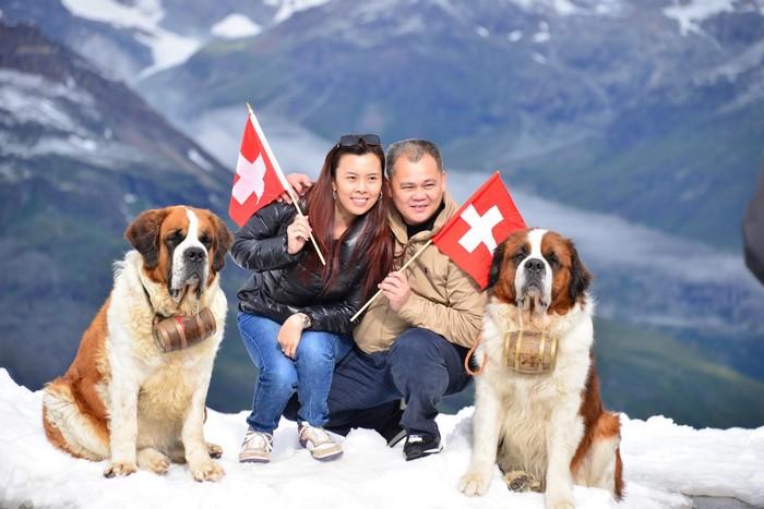 山河、冰川、国旗、灵犬,是瑞士的骄傲。