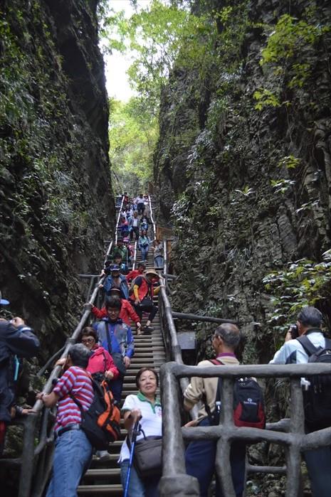 往下走的梯级很长,庆幸的是只走单程。