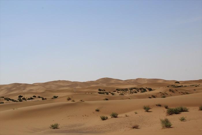 一望无际的沙漠。