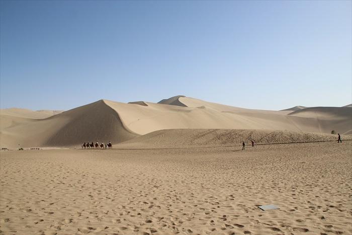 一片的沙海。