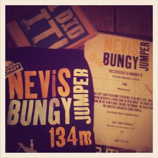 Nevis Bungy的证书、T-shirt和DVD。