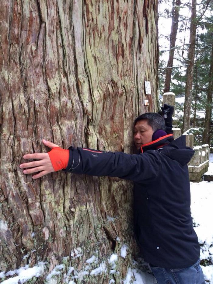 高野山桧木古树,今年1480岁了,十年来我拥抱了三次。