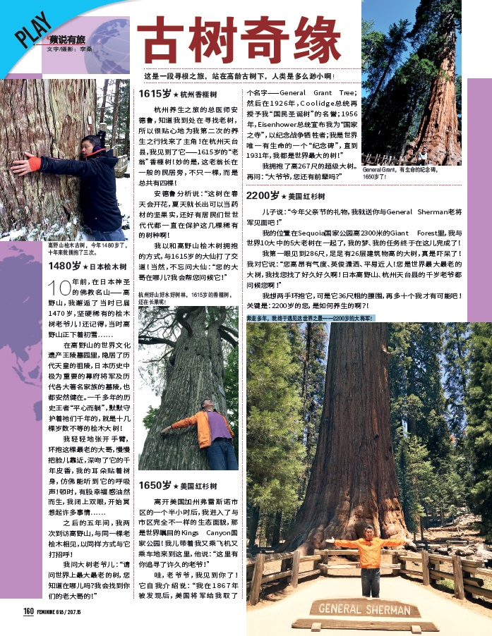 Oldest Tree in the world