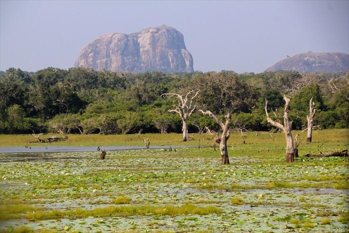 国家公园里的地质类型丰富,是多种动物的理想家园。