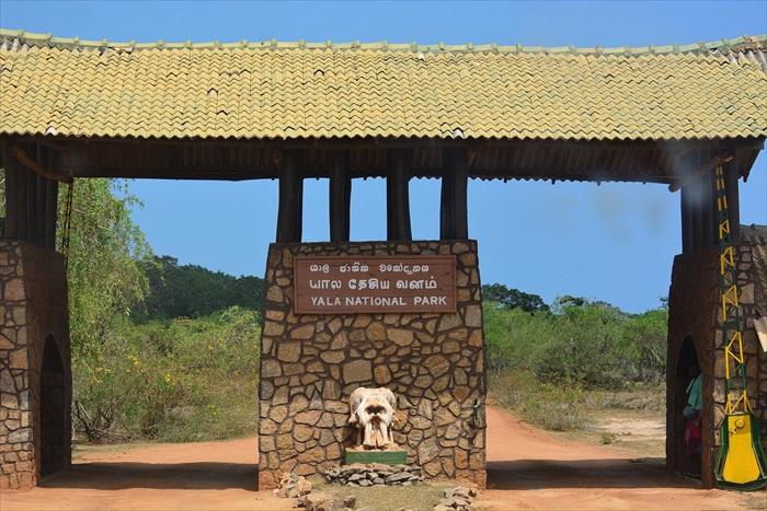 雅拉国家公园,是斯里兰卡最多游客造访的国家公园。