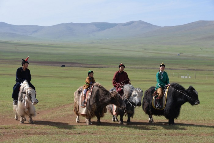 蒙古大草原--取决于5~6月的雨量,才会在7~9月长满绿草,其余月份都是光秃秃的土色。