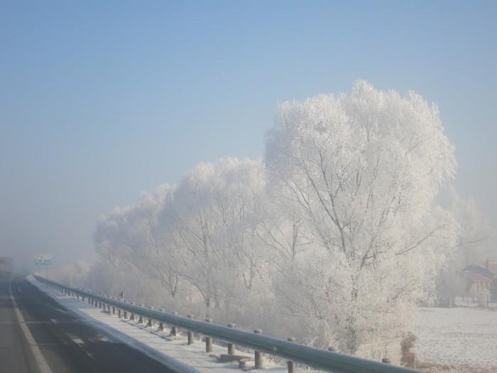 每到冬季,哈尔滨到处都是一幅幅唯美的诗画景色。