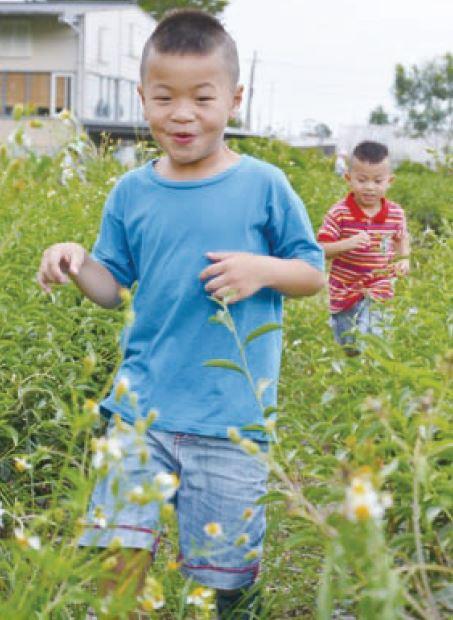 天真无邪的小孩在茶园奔跑,感受童年欢乐时光。(摄于星源茶园)