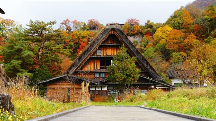 这是和田家。和田家是这里其中一个最富有的家庭,也是村的代表之一。建于江户时代后 期,他们的房屋是镇中最大的合掌造农舍, 现在是向公众开放的博物馆。
