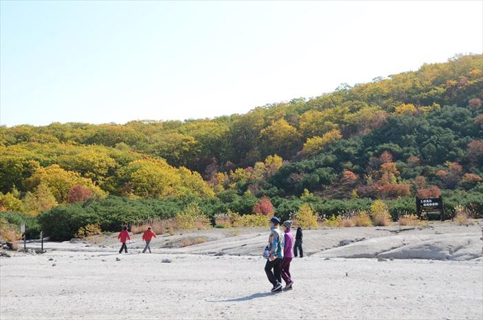 秋季的山林多了更多色彩。